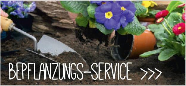 Bepflanzungsservice
